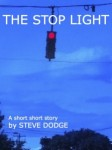 stop-light-cover